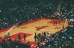 Atlanta Hawks, Priscilla, Flickr